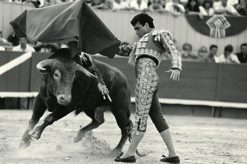 10 Toro
